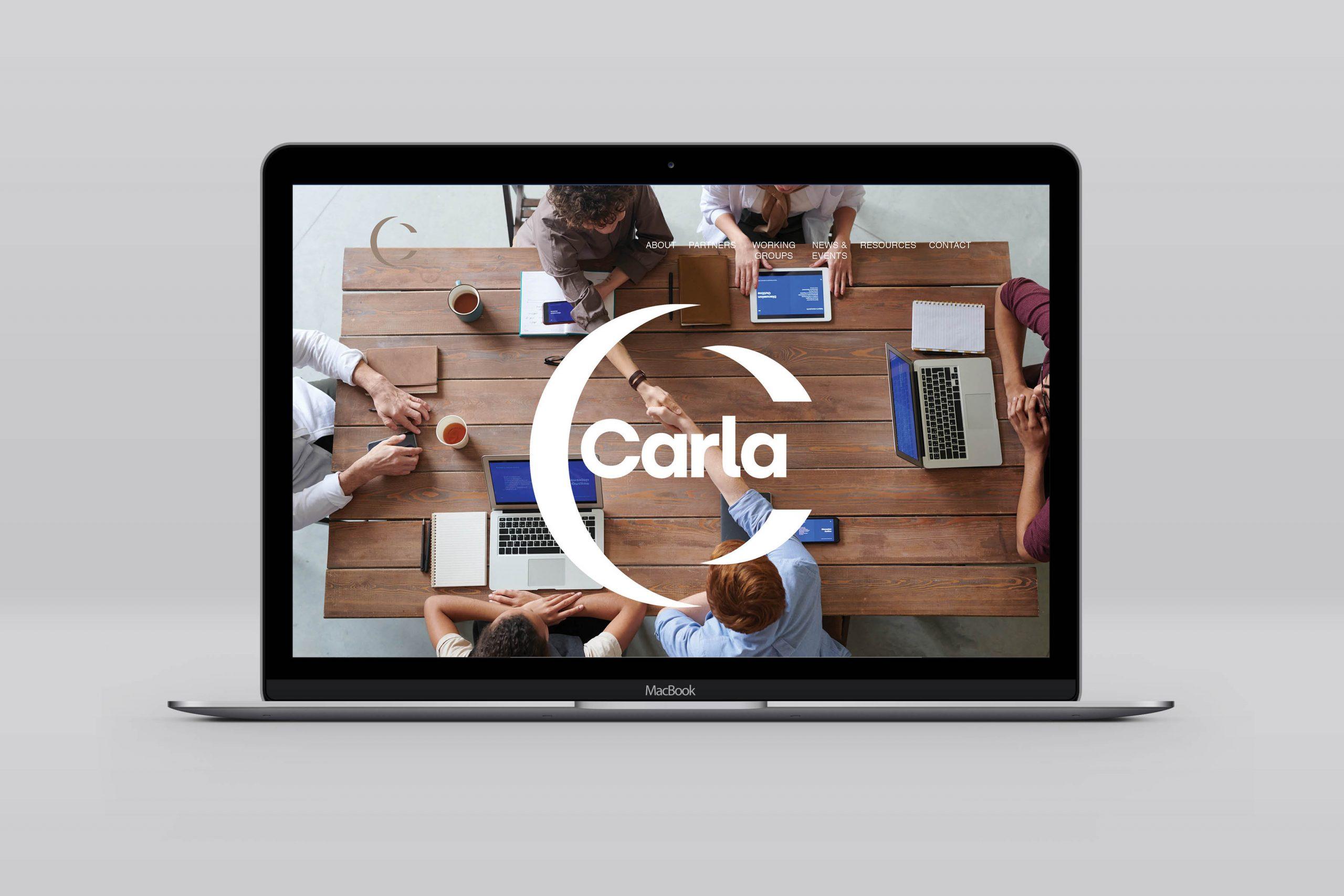 Bitflow-studio-carla-web-design-1