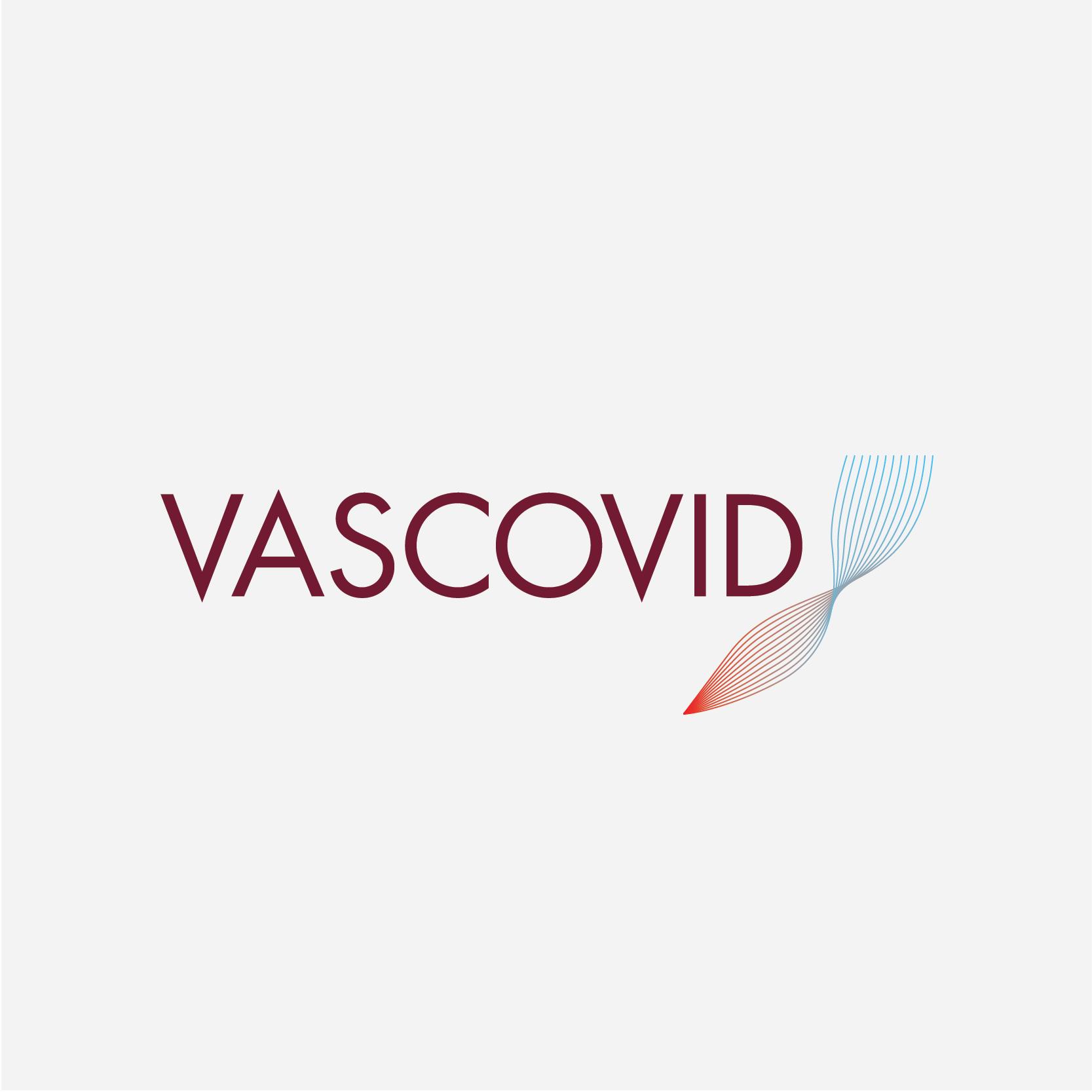Bitflow-studio-logo-scientific-project-vascovid-1